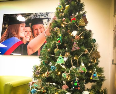 College christmas tree with graduation photo hung on the wall in the background.